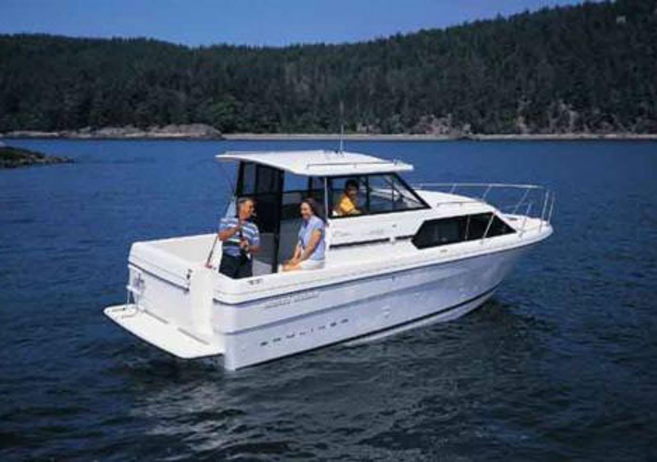 Bayliner Angie ausleihen Bootscharter Malow